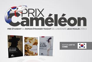 Cameleon 2017-2018 flyer